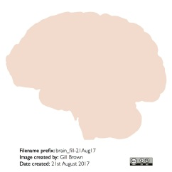 human_brain_gallery_image8-22Jan18